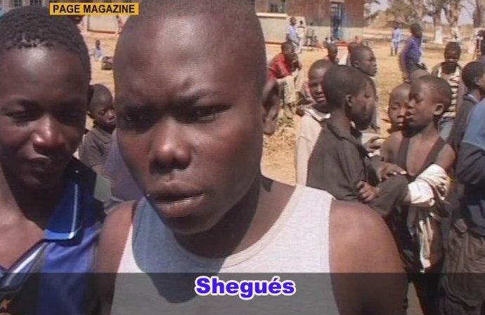 shegues200809.jpg
